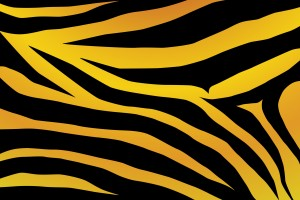 Gold zebra print wallpapers