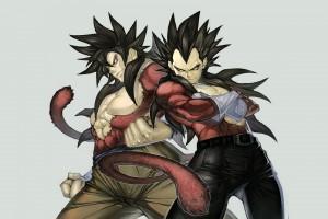 dragon ball z wallpapers twins