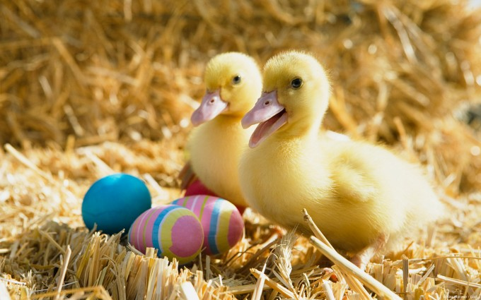 easter images amazing