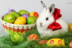 easter wallpapers bunny sweet