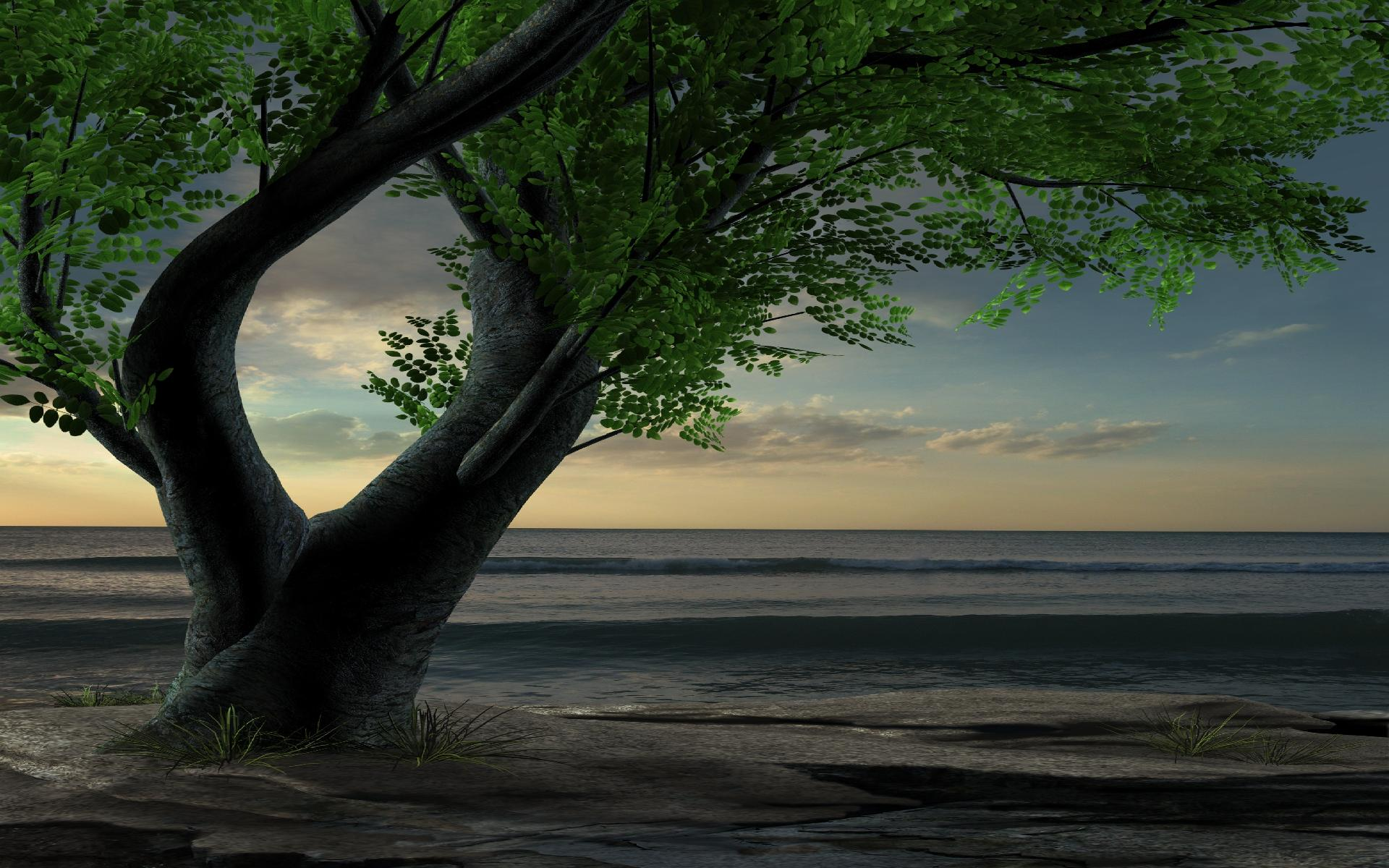 fantasy-trees-wallpapers