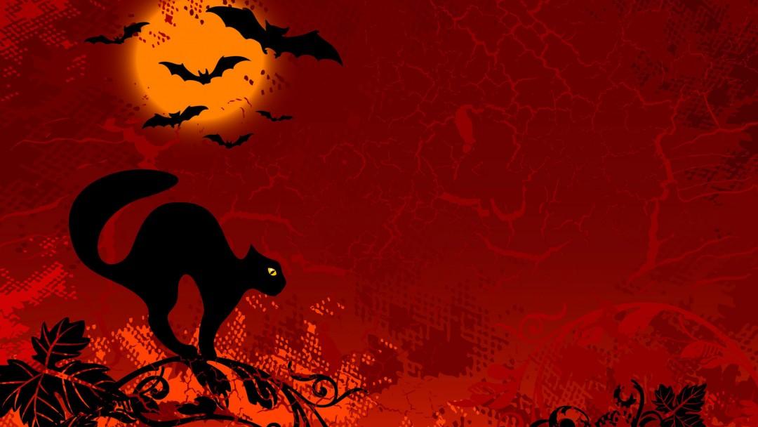 halloween wallpapers cat red