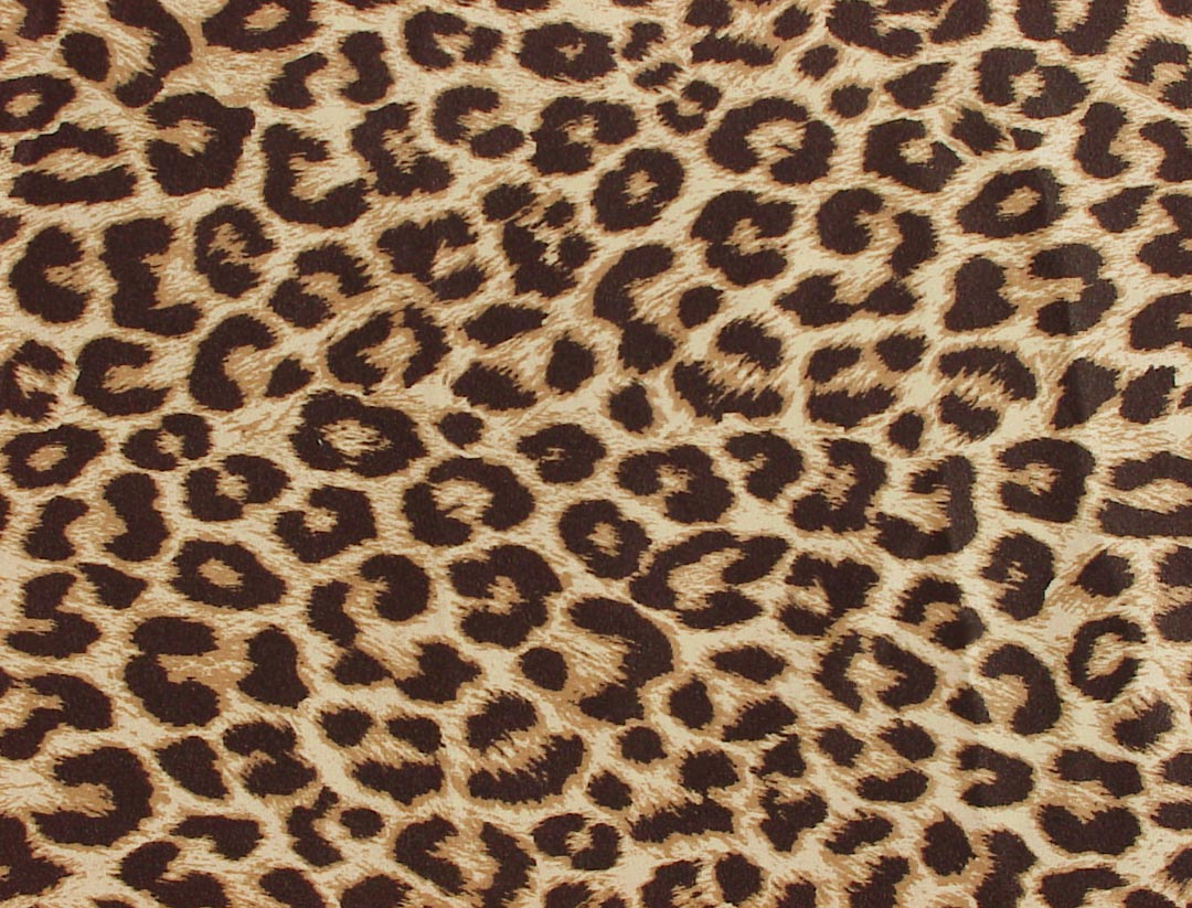 leopard print wallpaper - HD Desktop Wallpapers | 4k HD