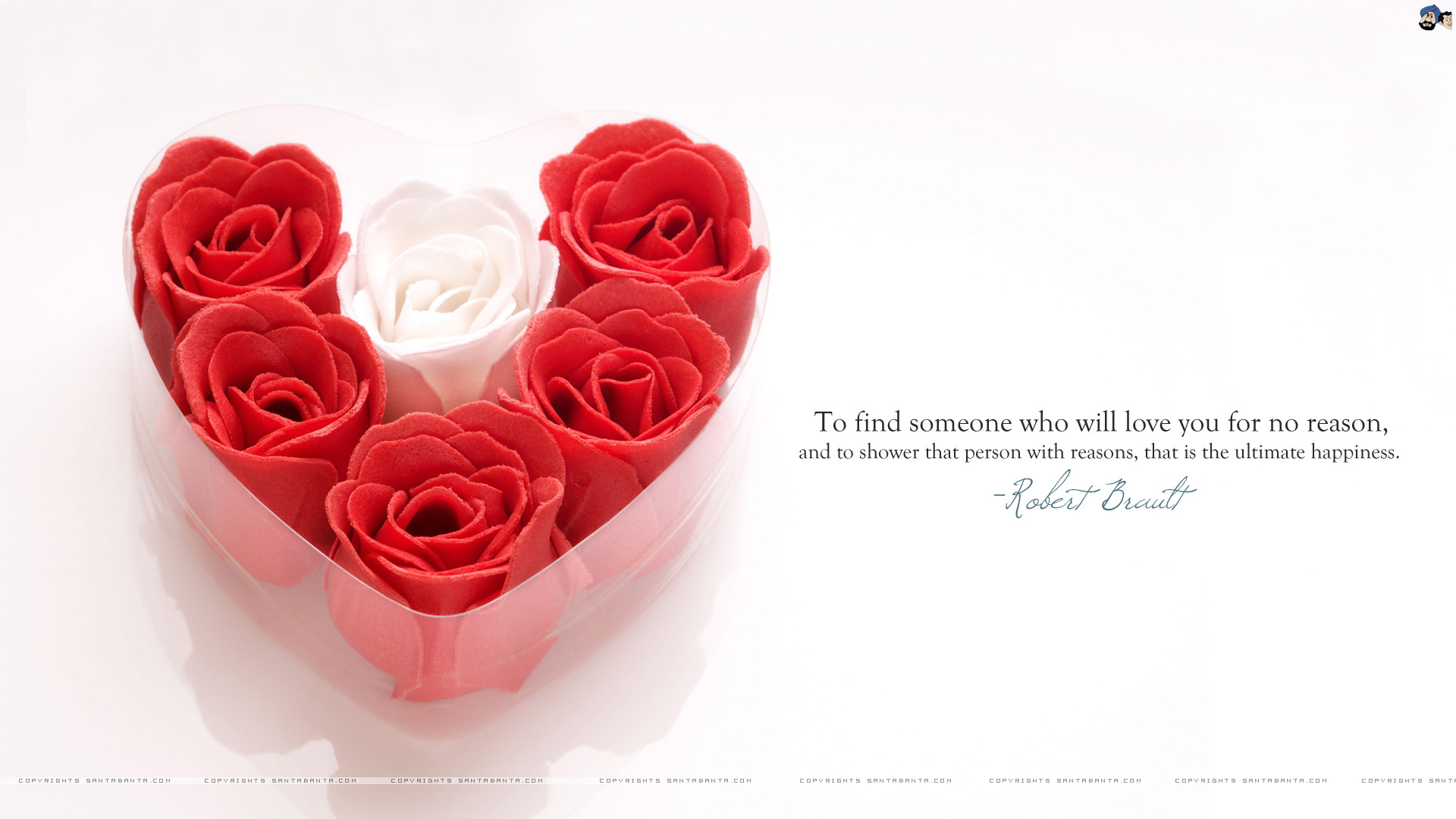 love quotes with wallpapers