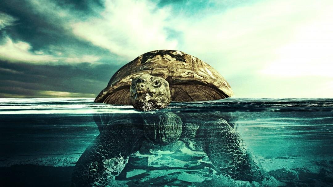 ocean wallpaper underwater