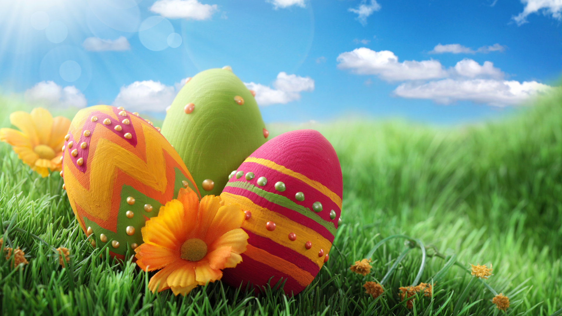 photos of easter eggs aa