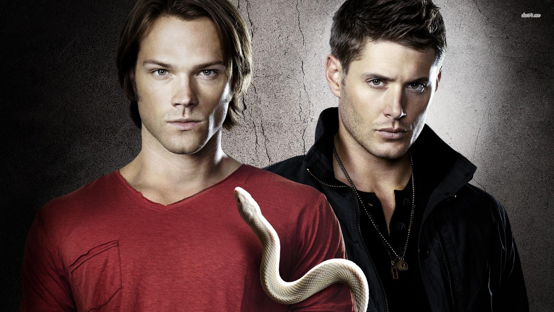 supernatural wallpapers snake