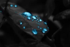 water wallpaper blue