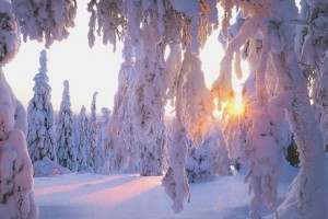 winter wallpapers cool