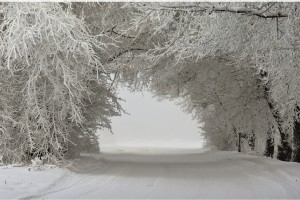 winter wallpapers hd lovely