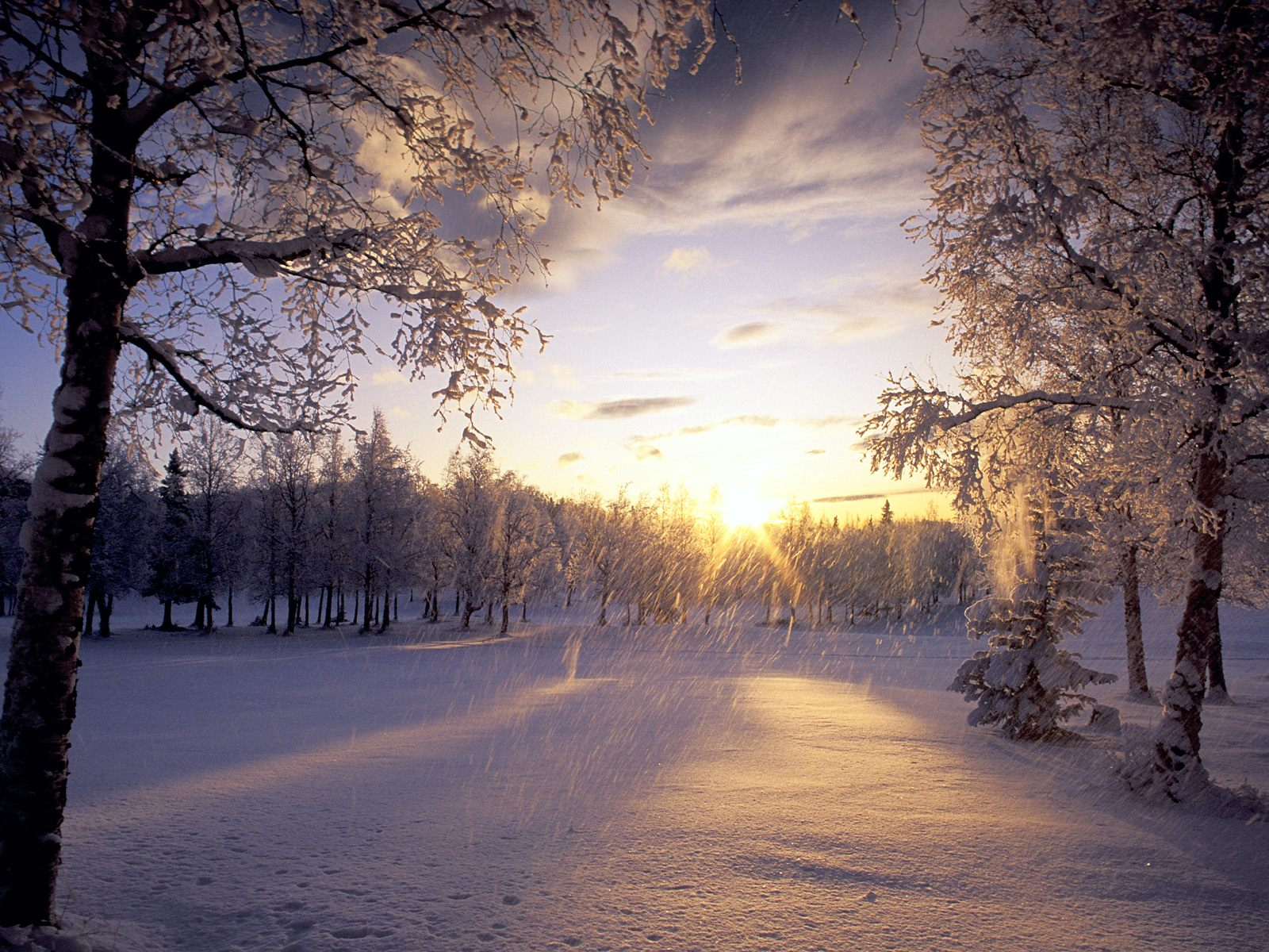 winter wallpapers sunlight