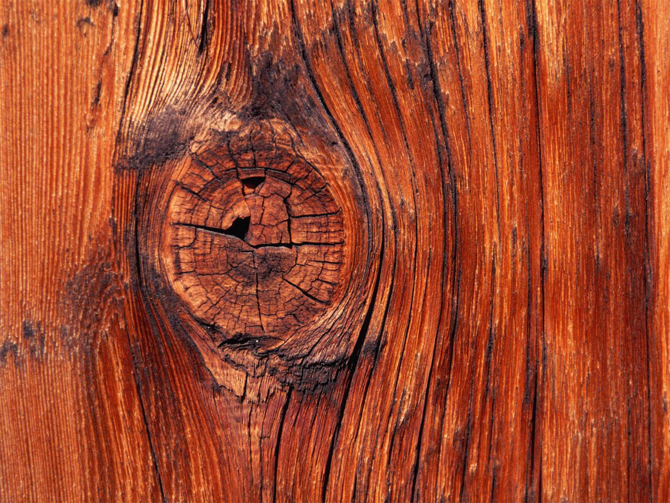 wood wallpaper lovely