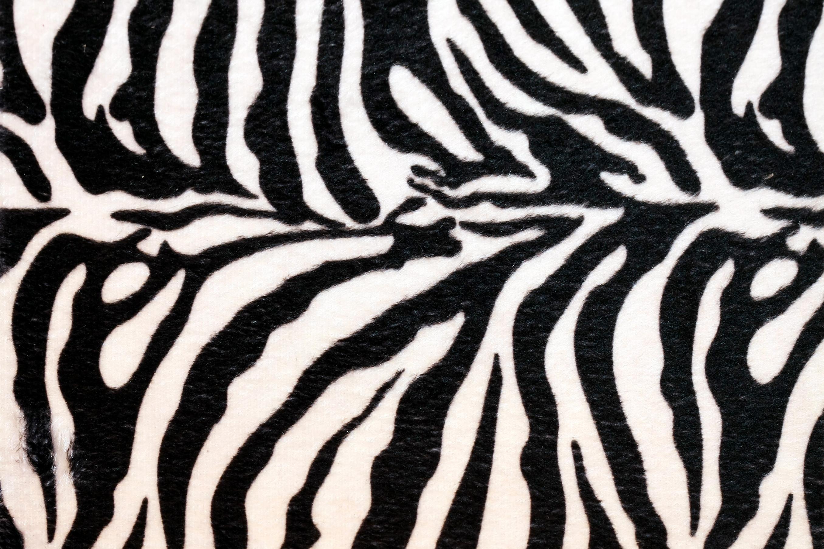 zebra print wallpapers cool