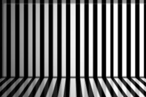 zebra print wallpapers stripes