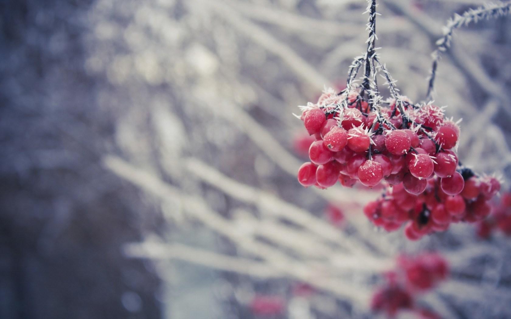 scenic winter beautiful wallpapers - photo #44