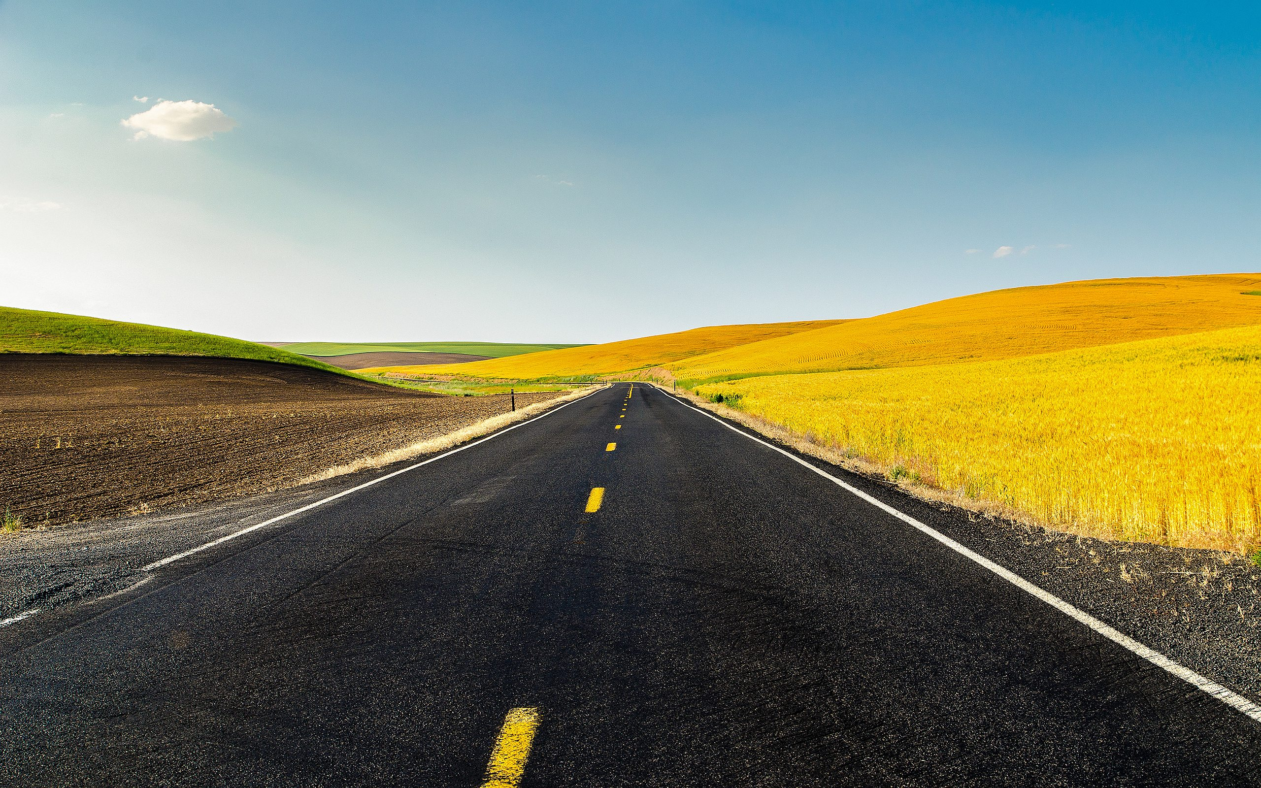 cornfield usa america - HD Desktop Wallpapers   4k HD