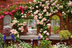 rose garden images