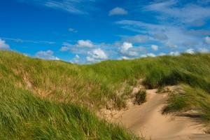 sand dunes nature backgrounds