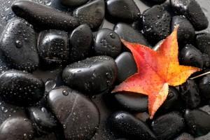 stone wallpaper wet black
