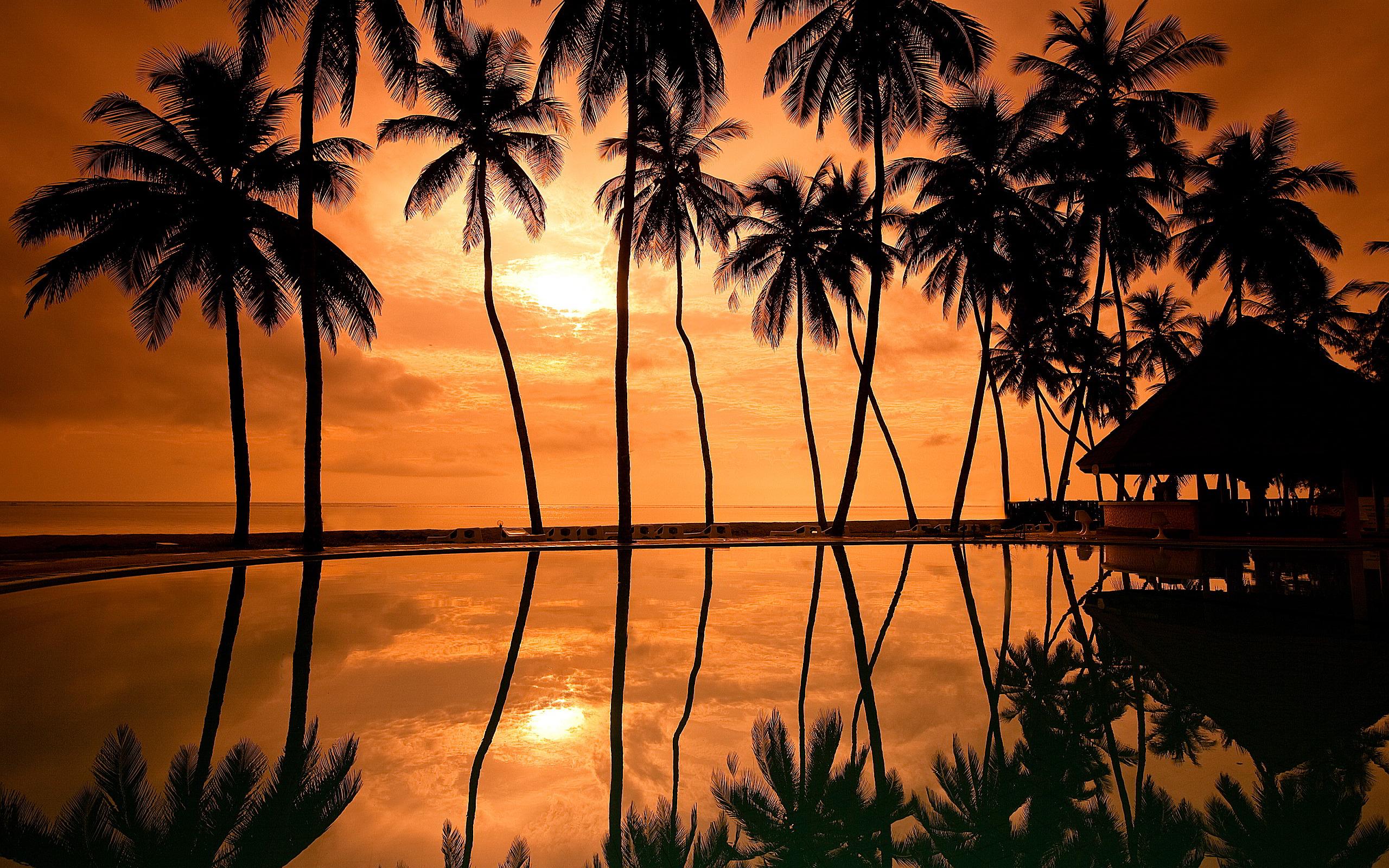 sunset photos hawaii beach