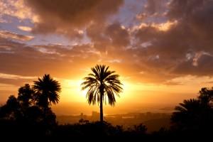 sunset silhouette landscape nature