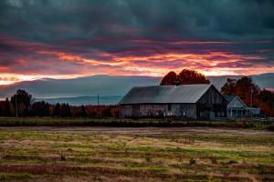 sunset wallpapers farm
