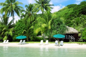 tropical holiday travel