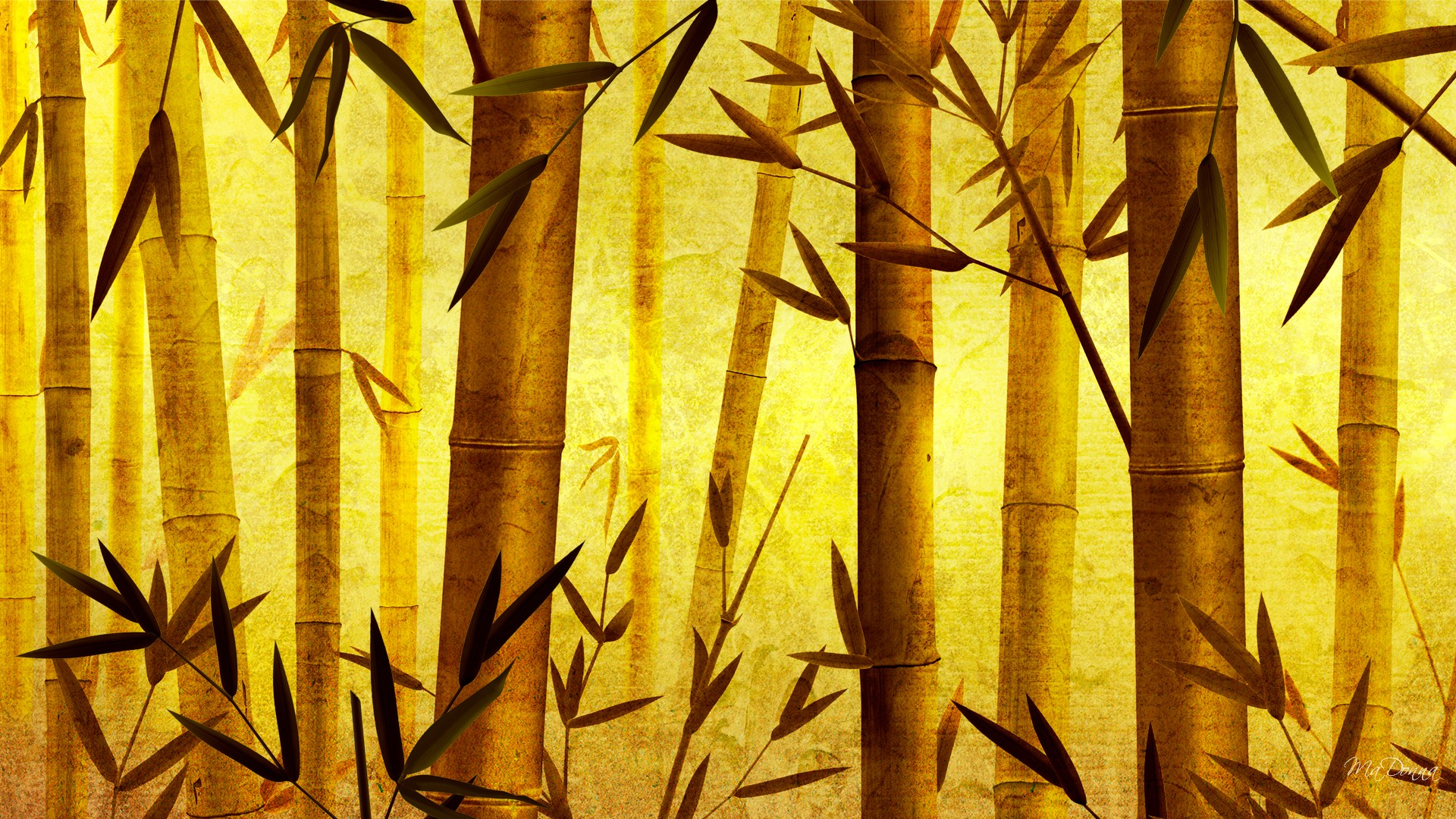 bamboo wallpaper background