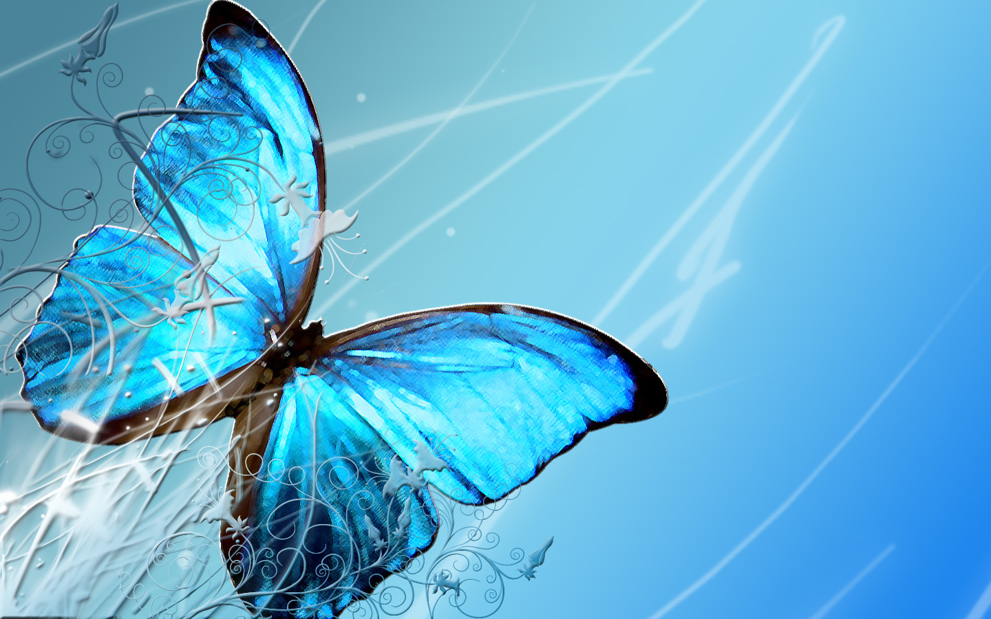 Butterfly Hd Wallpaper Free Download Hd Desktop Wallpapers 4k Hd