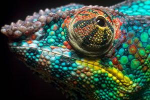 chameleon wallpapers pc