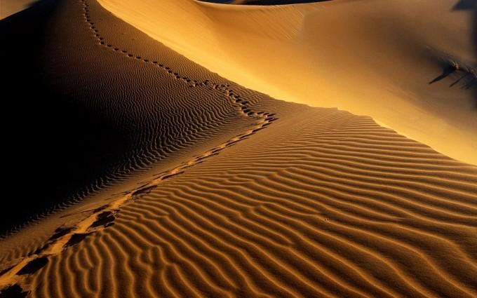 desert wallpaper 1080p