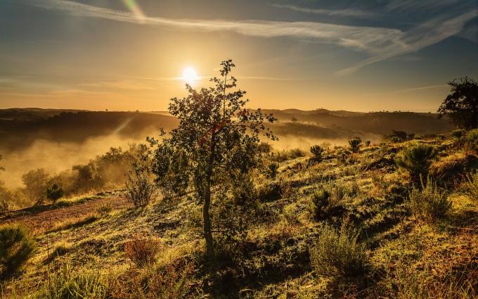 fantastic sunset hd