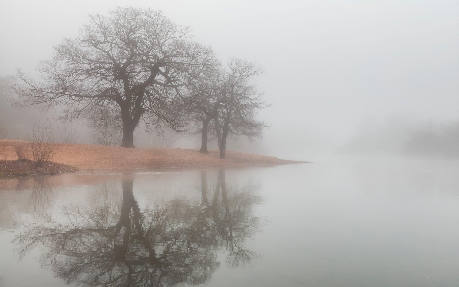 fog desktop backgrounds