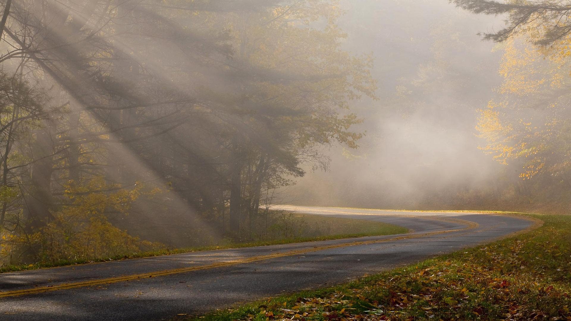 fog wallpapers - HD Desktop Wallpapers | 4k HD