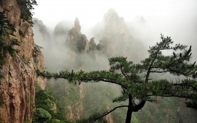 foggy scenery photography