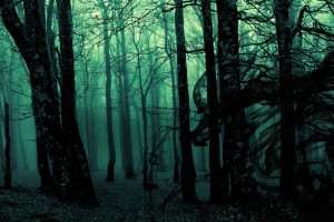 forest background mysteriousA2