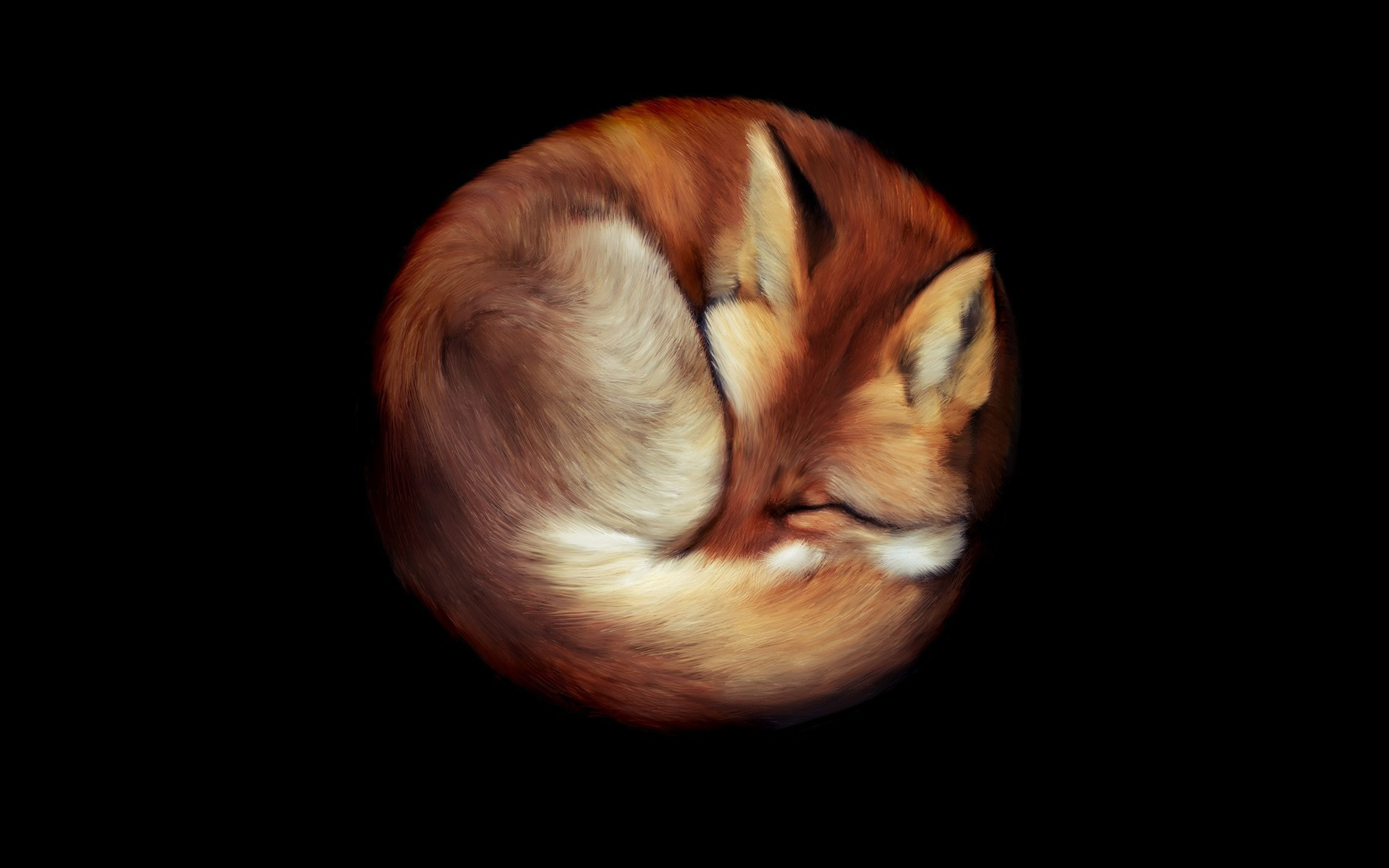 fox wallpapers A4