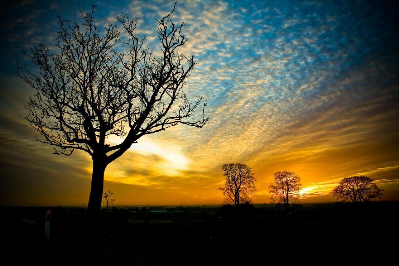 free wallpaper sunset scenery