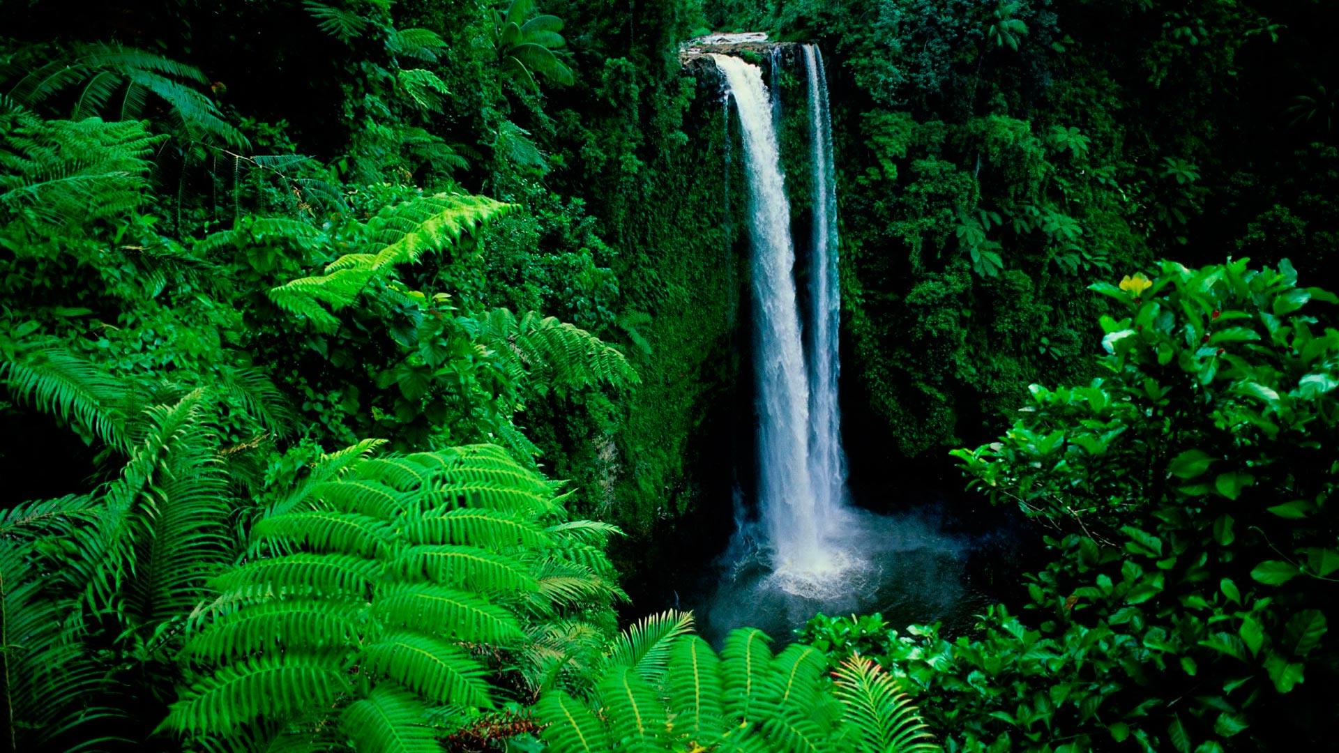 free wallpaper waterfall