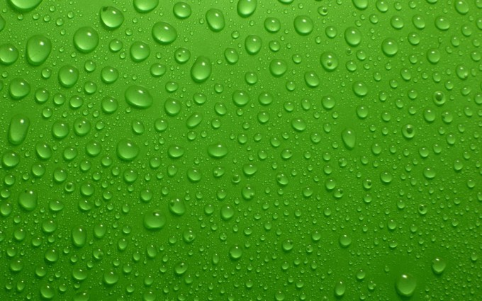 green dew drops pictures