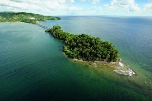 green palm island