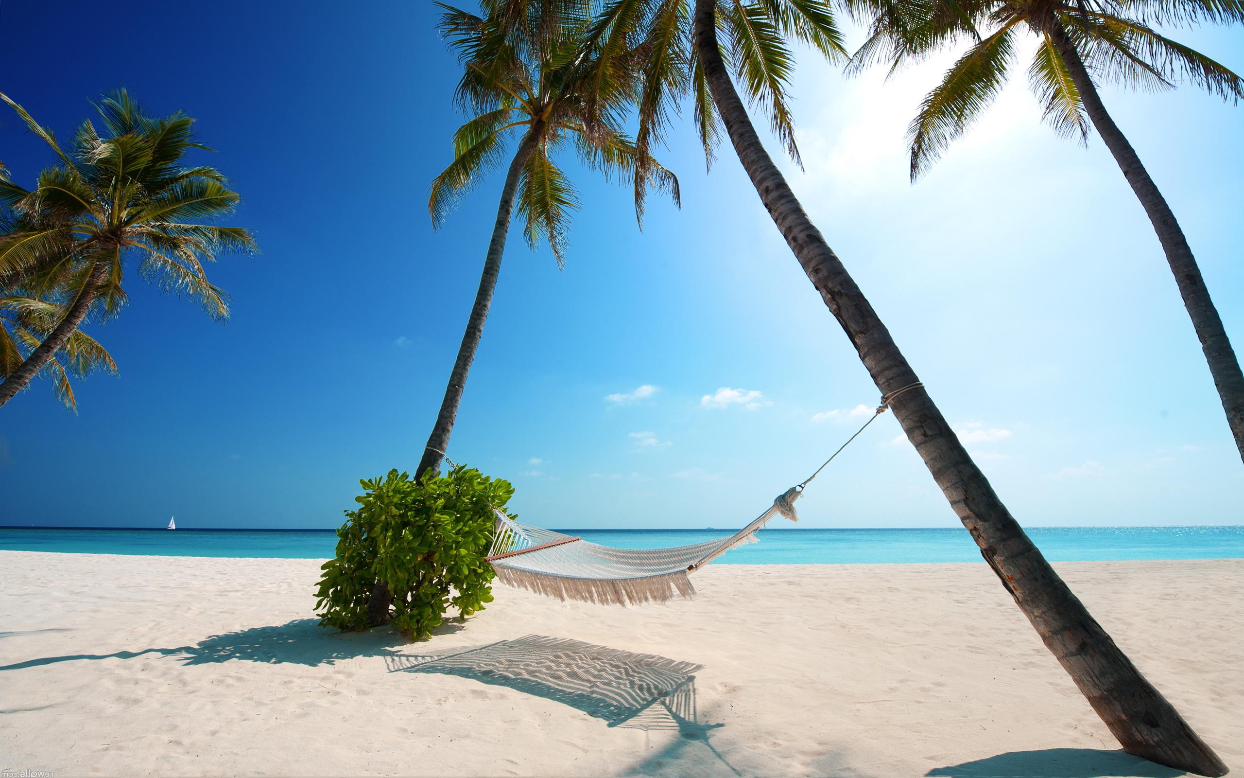 hammock beach cool