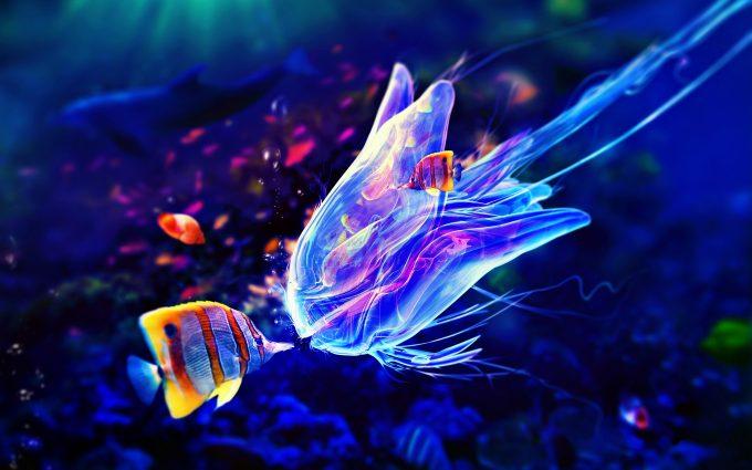 jelly fish 3d