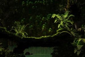 jungle wallpapers nice