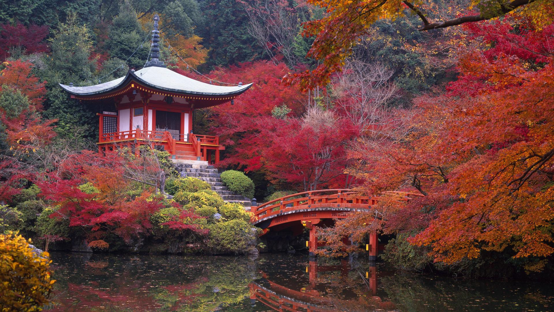 lovely wallpaper autumn