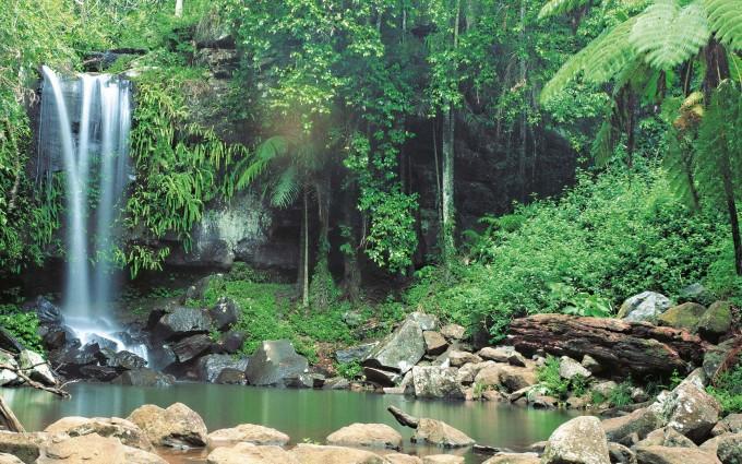 nature nature cool