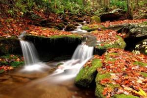 nature pictures amazing