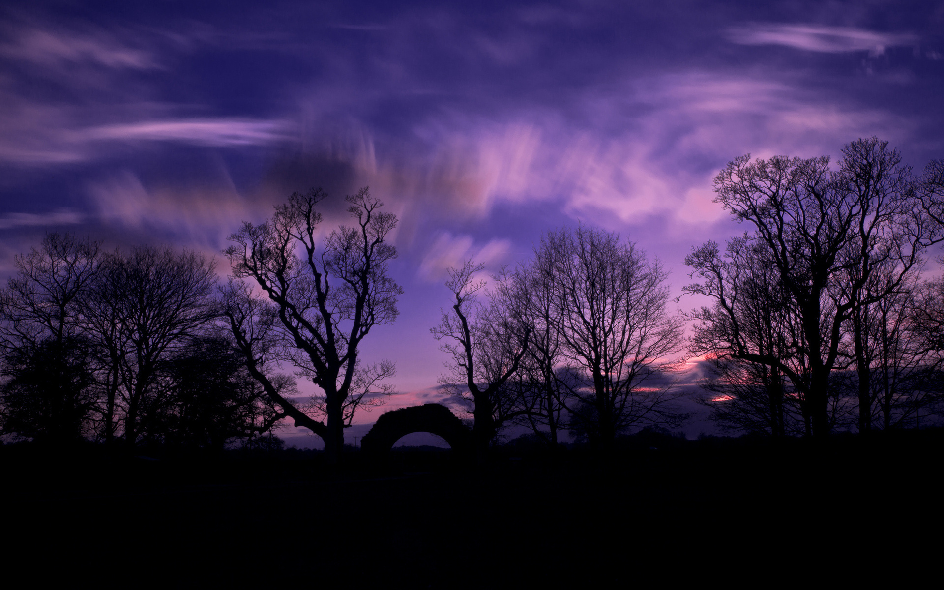 night tree wallpaper silhouette