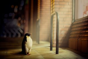 penguin wallpaper abstract
