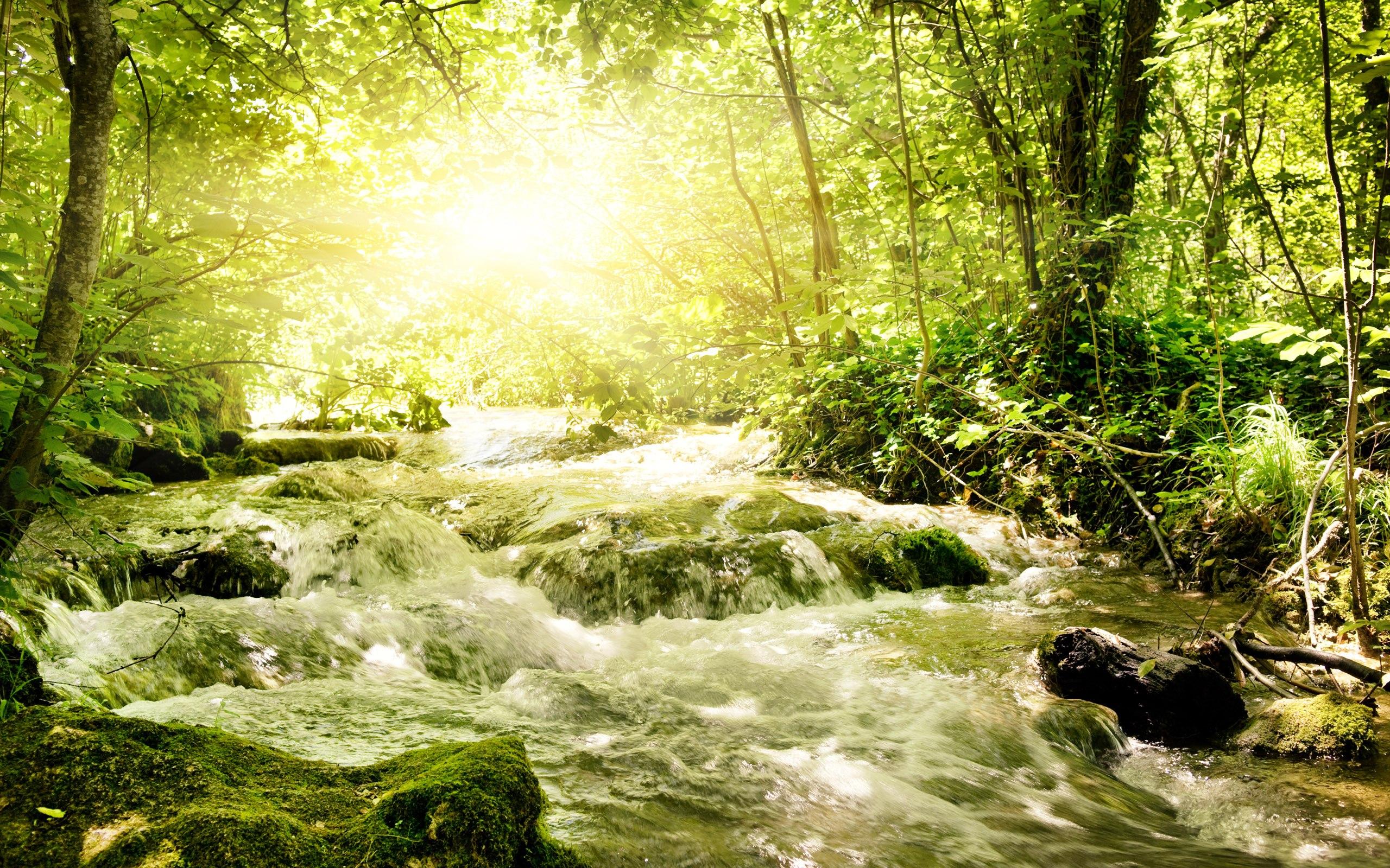 pretty wallpaper river